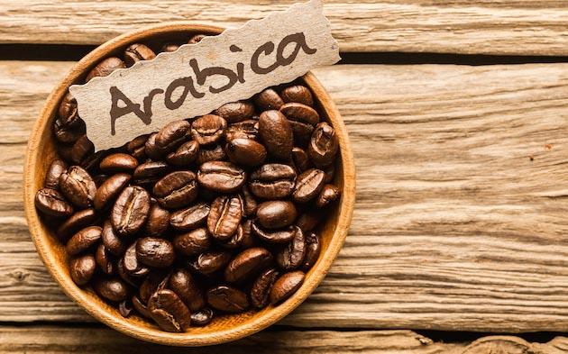 Arabica Coffee 630